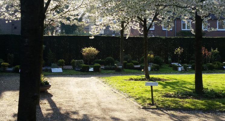 Uitstrooien van een urn kan op het strooiveld van RK begraafplaats St. Barbara in Hilversum